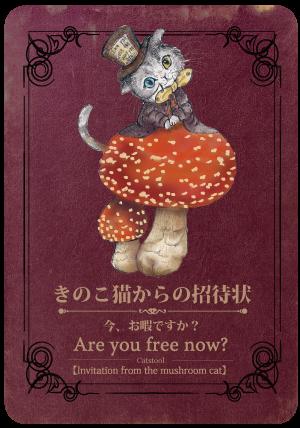 きのこ猫からの招待状<br>今、おひまですか?
